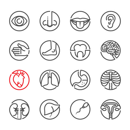 cancer foot: Human Anatomy icons with White Background Illustration
