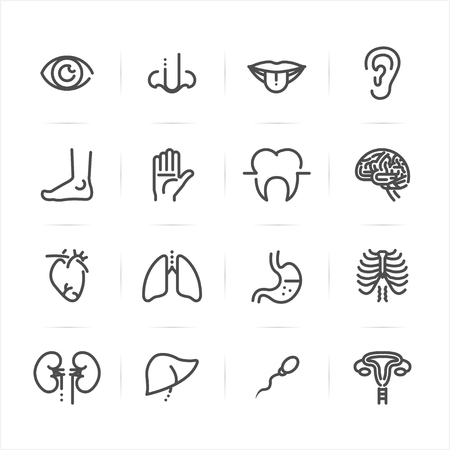 Human Anatomy icons with White Background Illustration