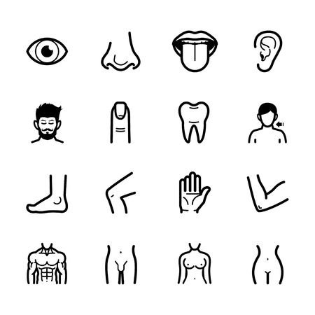 Human Anatomy icons with White Background Banco de Imagens - 109588540