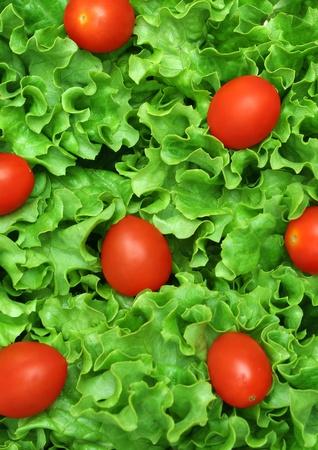 Macro-opname van een groene salade met tomaten
