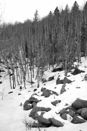 colorado rocky mountains: Snow on a mountain slope in the rocky mountain national park Stock Photo