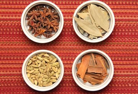 indian spices: Indische kruiden in vormpjes