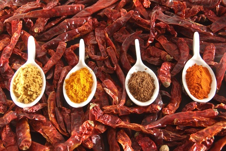 variety of indian spices and chilli pepper