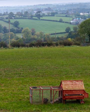 Red Chicken Coop in rural Northern Ireland farmland.