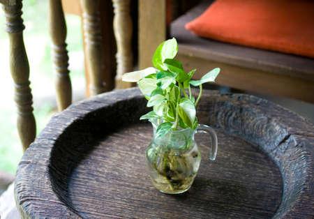 Vase on the table interior photo