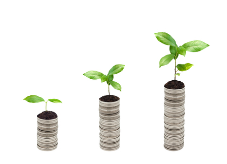 coin silver: Stack of silver coin and small plant concept growth Stock Photo