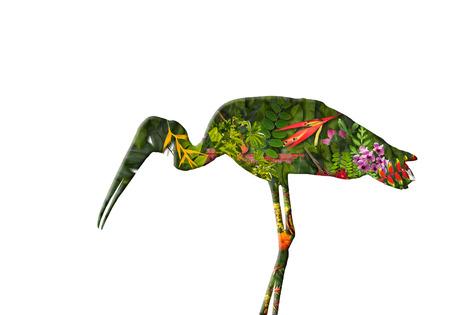 exposicion: Doble exposici�n concepto de naturaleza verde Foto de archivo