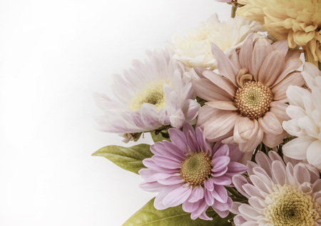 Colorful flower bouquet arrangement in vase isolated on white background - vintage effect filter Imagens