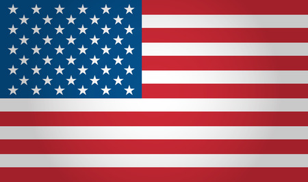 state government: American flag background