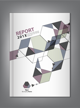 report cover: Abstract geometric Annual report Cover design vector