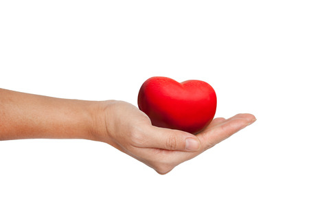 heart organ: Red Heart in female hand isolated on white background
