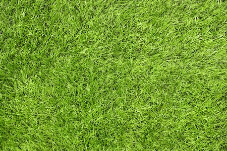requires: Bright green artificial grass in a football field. This requires a lot of artificial grass - green grass texture or green grass background for football theme and concept