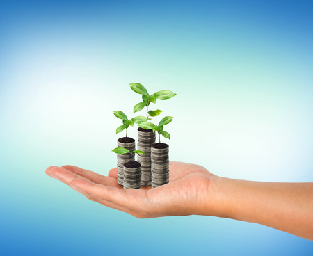 Stack of silver coin and small plant growth in the woman hand. Business growth concept. Stock Photo