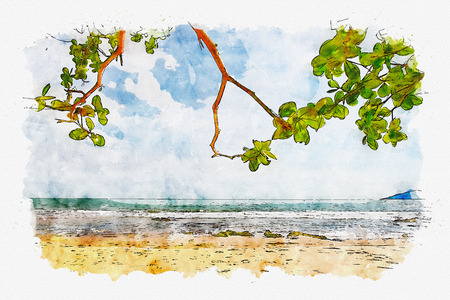 tree leaves over luxury beach in water colour