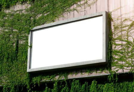 White billboard on spring summer green leaves background.