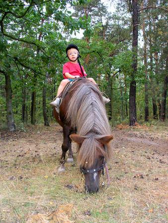 My Pony Stock Photo