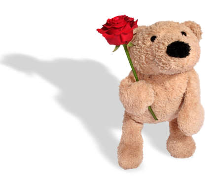Bear with rose