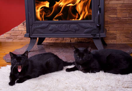 Warm winter fire photo