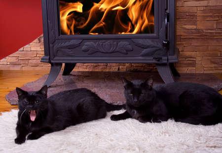 Warm winter fire photo