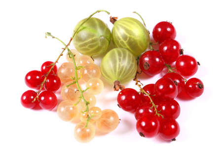 blackberry bush: Fresh red, white currants and gooseberry