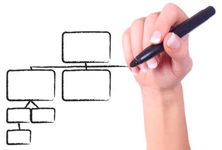 Female hand drawing black chart in whiteboard