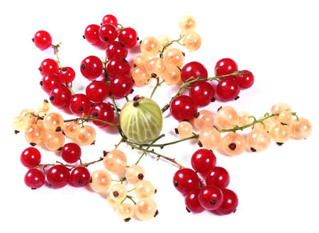 Fresh red, white currants and gooseberry on white background photo