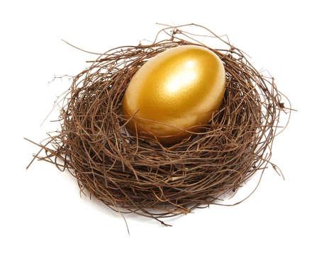 白い背景の上の実質の巣での金の卵 写真素材