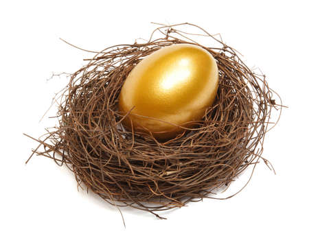 priceless: Gold egg in a real nest on white background Stock Photo