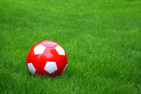 Soccer football ball over the green grass photo