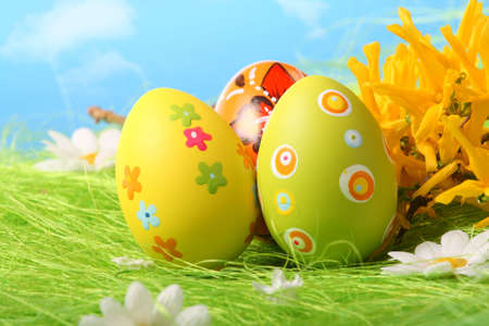 Easter Eggs sitting on grass field with blue sky background photo