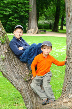 Smiling young brothers sitting in a tree