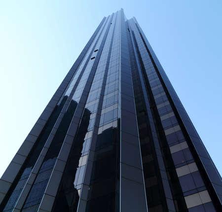 bask: New York City skyscraper bask in sunlight