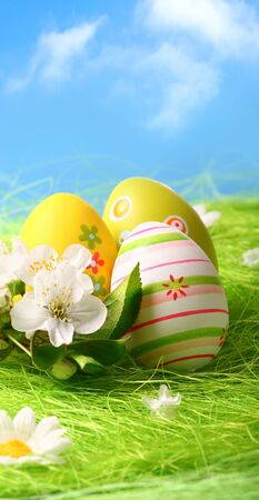 Colorful Easter Eggs and Flowers on Green Grass Standard-Bild