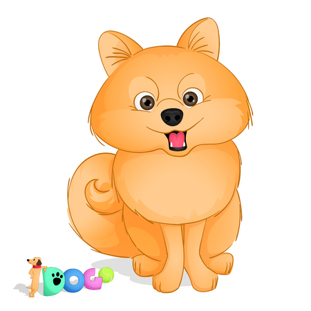 A cute small dog of spitz kind sitting and smiling. Drawn in cartoon style. Vector. Isolated from background