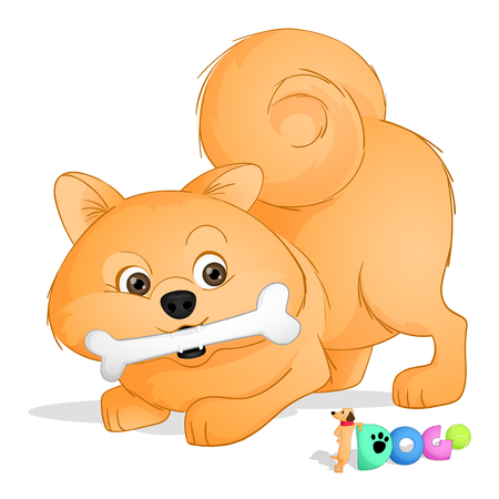 A cute small dog of spitz kind playing with a bone. Drawn in cartoon style. Vector. Isolated from background Illustration