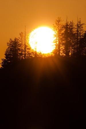greys: Sunset at Bowerman Basin, Greys Harbor, Washington.