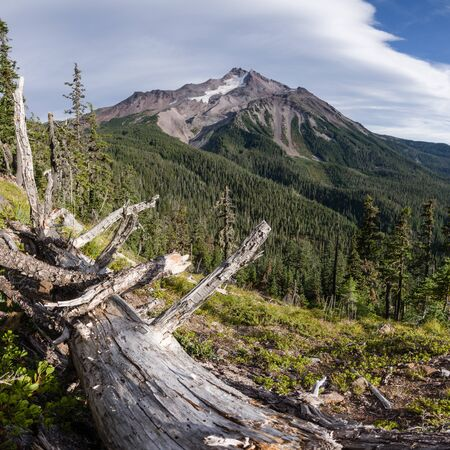 wilderness area: Mount Jefferson. Mt Jefferson Wilderness Area, Oregon.