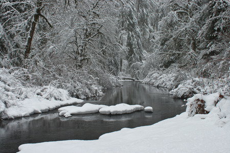 oregon cascades: Winter. North Fork Silver Creek. Silver Falls, State Park, Oregon