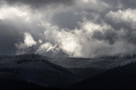Winters Break - Sun breaks through clouds in the Oregon Coast Range.
