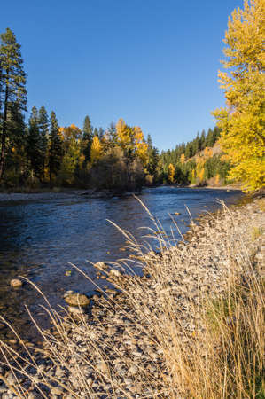 Fall colors along the Cle Elum River, Washington.