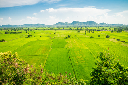 Beautiful landcape rice green field, mountain with blue sky in sunny day from viewpoint, central Thailand
