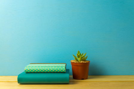 Notebook and succulent plant on table over blue wooden background, business and education concept Stock Photo