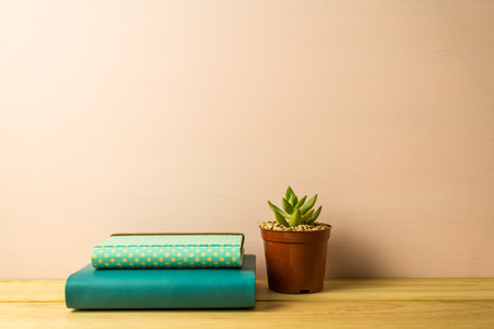 Notebook and succulent plant on table over pink wooden background, business and education concept