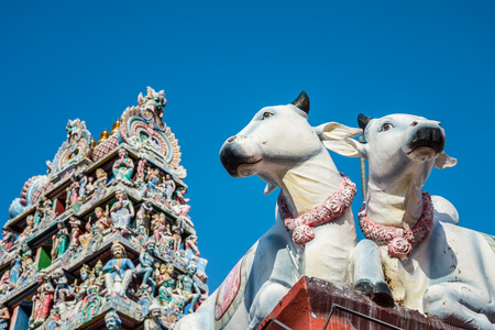 The Sri Mariamman Hindu Temple Chinatown in Singapore - Selective focus at cows