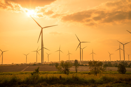 Wind turbines generating electricity in evening sunset