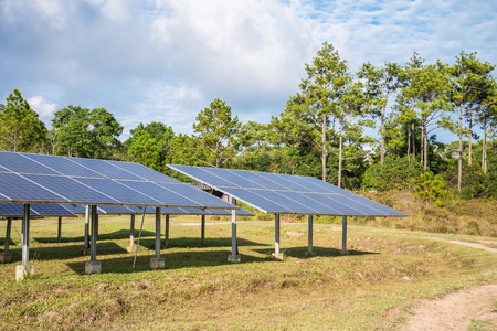 Solar energy panels in green forest Stock Photo