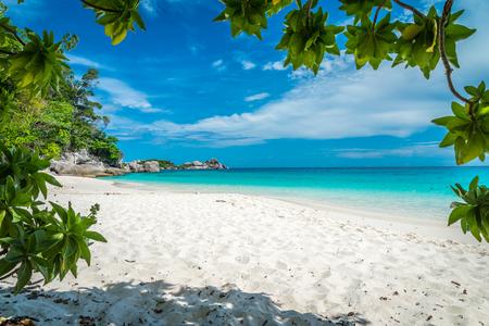 Beautiful tropical similan island white beach -  Thailand Standard-Bild - 102837481