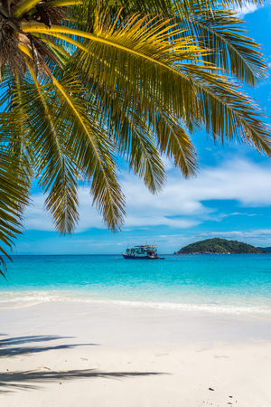 Beautiful tropical Similan island beach -  Thailand