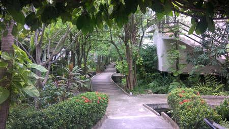 sylvan: walk way in a resort at Pran Buri District