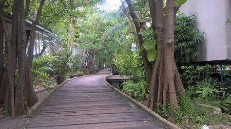 hushed: walk way in a resort at Pran Buri District